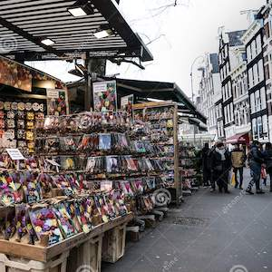bloemenmarkt-flower-market-amsterdam-holland-floating-world-was-founded-located-singel-muntplein-134829873